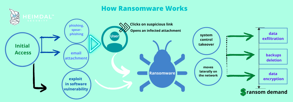 Heimdal™ Image on how ransomware works