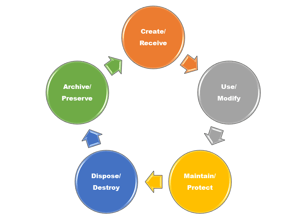 registry management life cycle