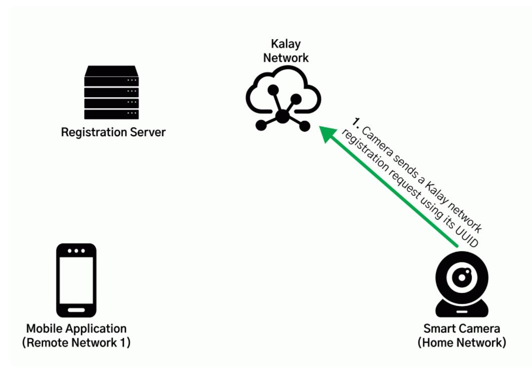 Image illustrating new IoT bug