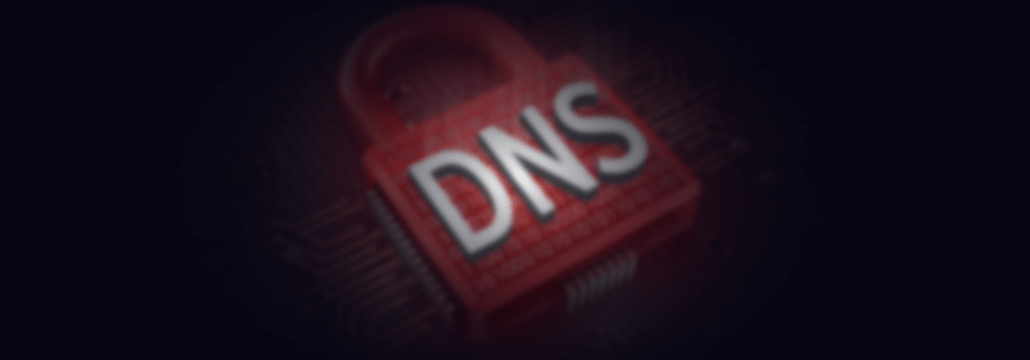 dns security nsa report concept photo