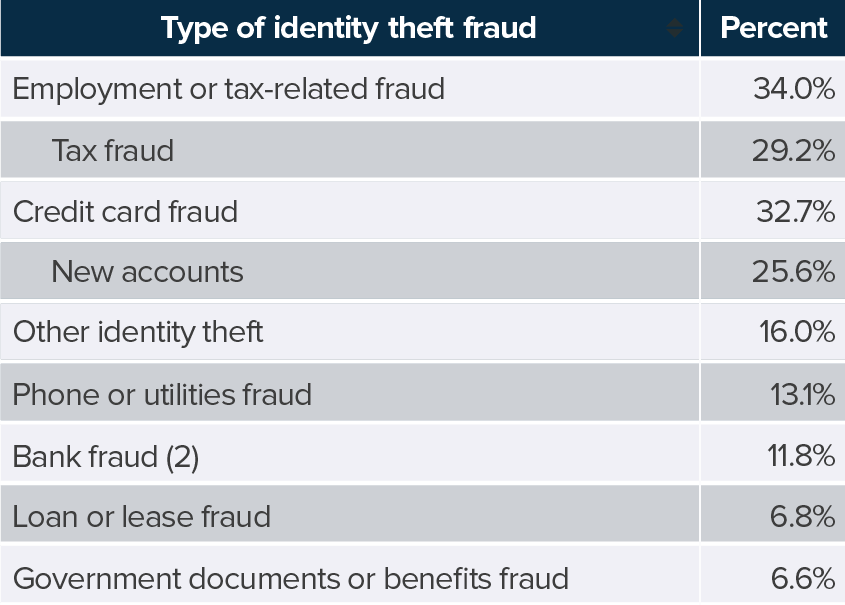 types of identity fraud for 2017