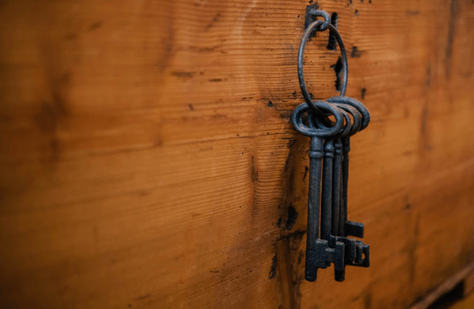 data encryption software - keys concept image